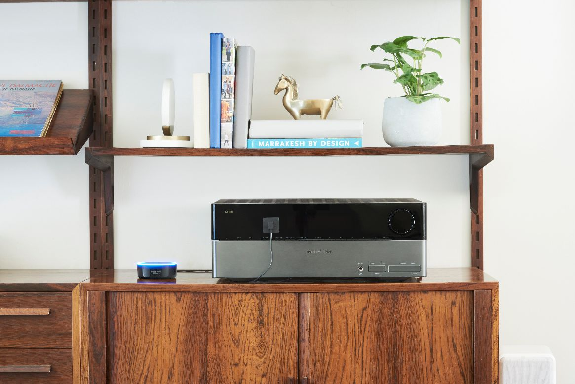 Echo Dot Shelf.jpg
