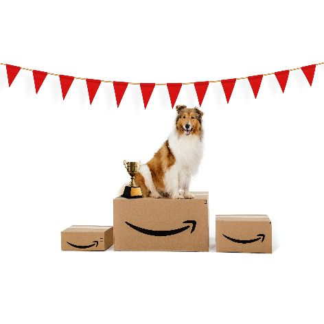 Amazon_Face-of-Amazon-Pets_Winner_2019_03