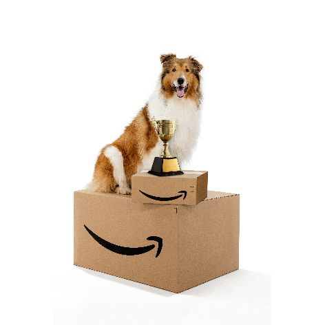 Amazon_Face-of-Amazon-Pets_Winner_2019_01