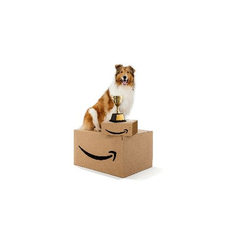 Amazon_Face-of-Amazon-Pets_Winner_2019_02